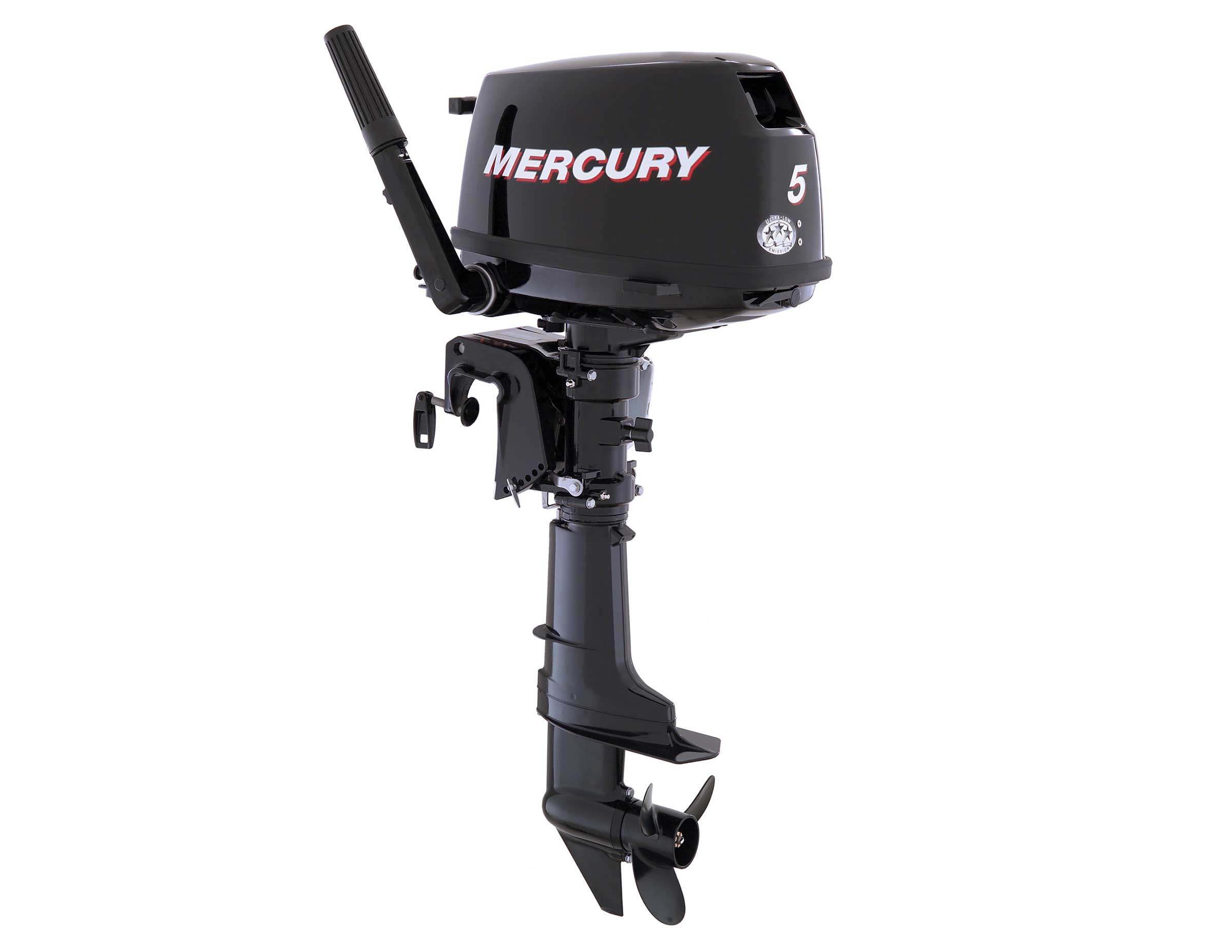 Mercury Portable Motor